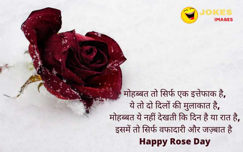 happy rose day wishes in hindi