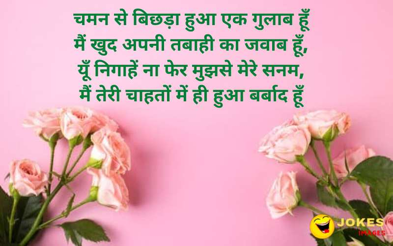 Rose Day Message in Hindi Fonts