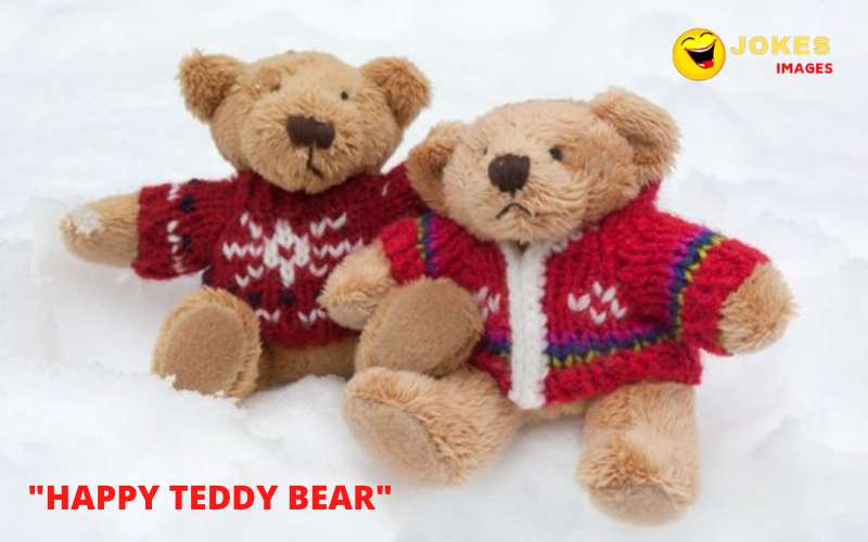 Happy Teddy Day Wishes in Hindi