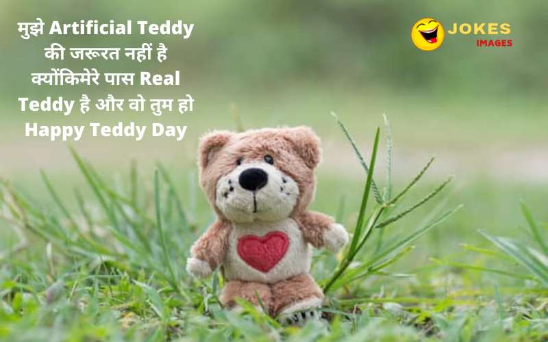 teddy day wishes to wife in hindi