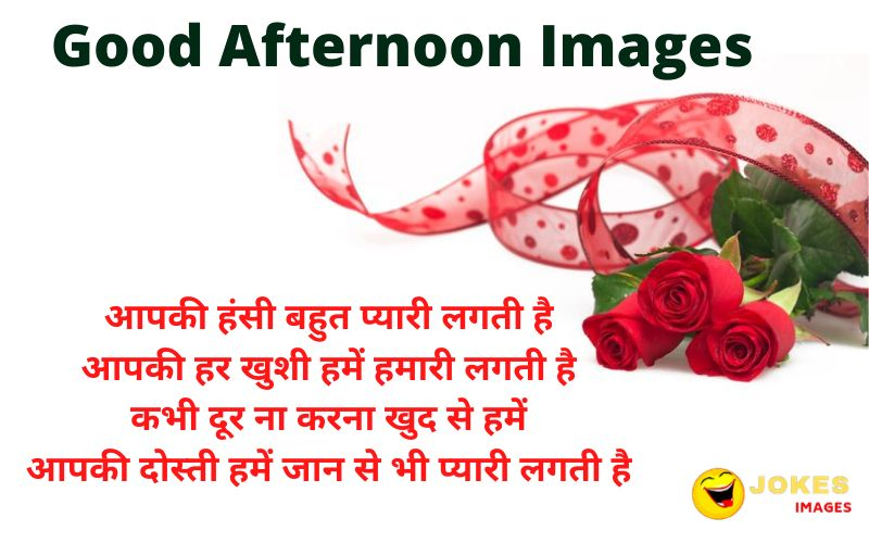 Best Good Afternoon Wishes in Hindi