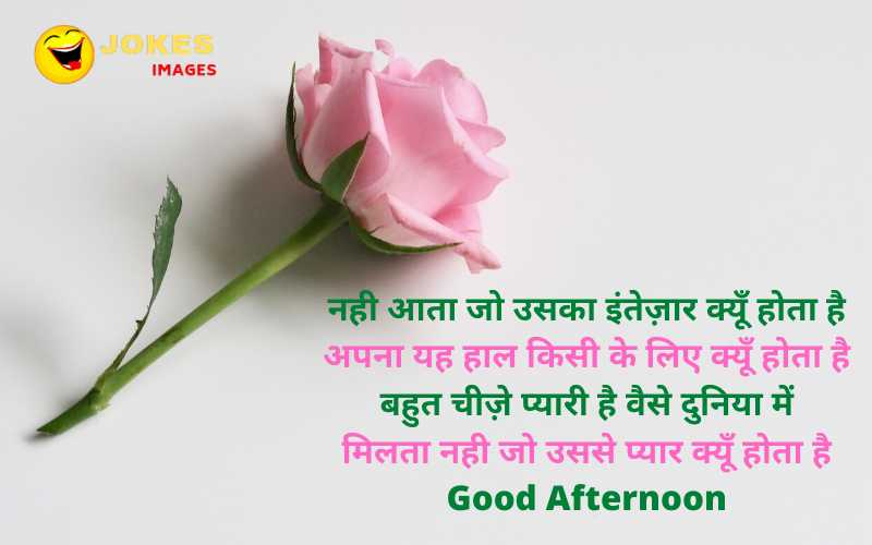 Good Afternoon Image With Quotes In Hindi